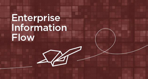 What's What: Introducing Enterprise Information Flow