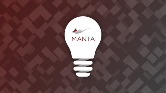Key Features of MANTA: Its Understanding Superpower